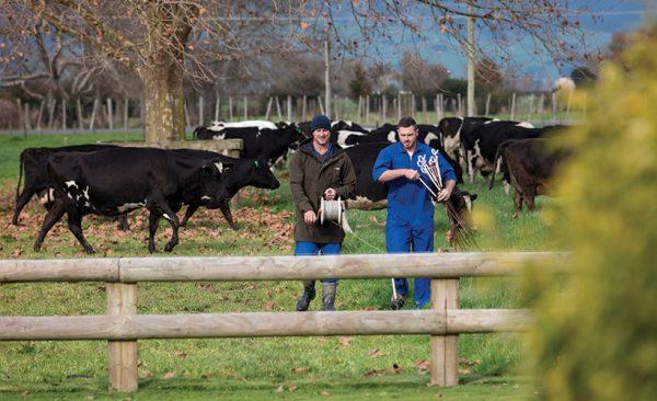 On farm short courses